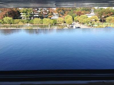 秋田県立美術館 水庭